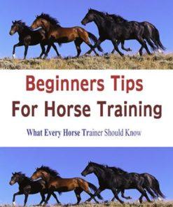 BEGINNERS-TIPS-FOR-HORSE-TRAINING