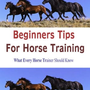 BEGINNERS-TIPS-FOR-HORSE-TRAINING