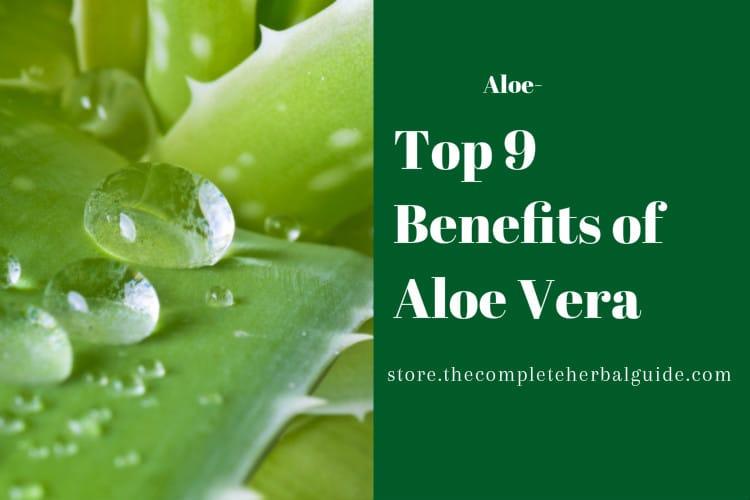 Top 9 Benefits of Aloe Vera