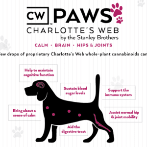 CWB-Paws-InfoPic (1)